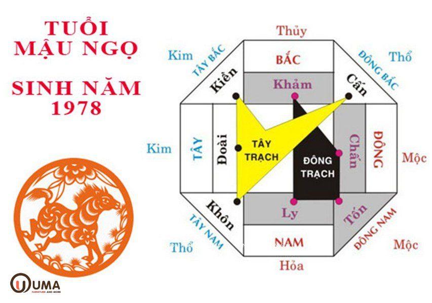 Hướng hợp người sinh năm 1978 Mậu Ngọ