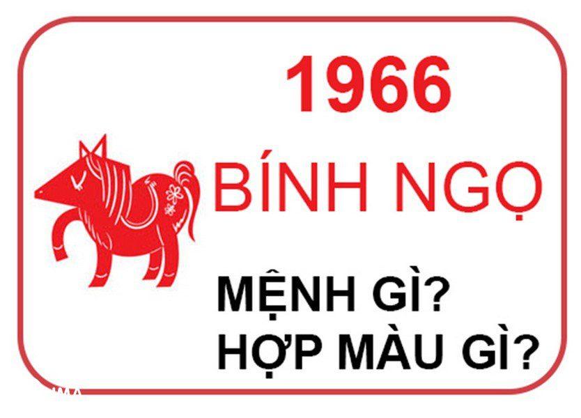 Sinh năm 1966 hợp màu gì?