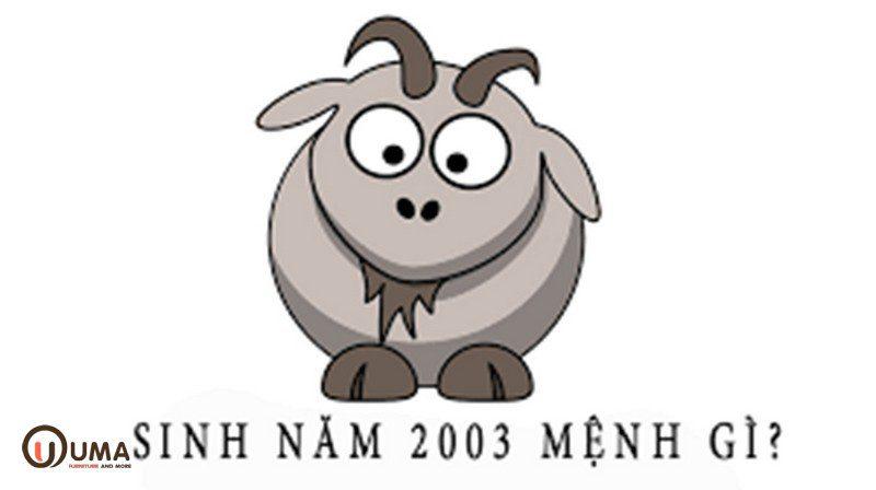 Năm 2003 mệnh gì?