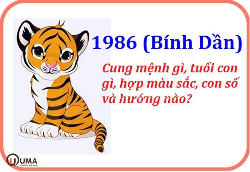 Tìm hiểu về tuổi Bính Dần sinh năm 1986