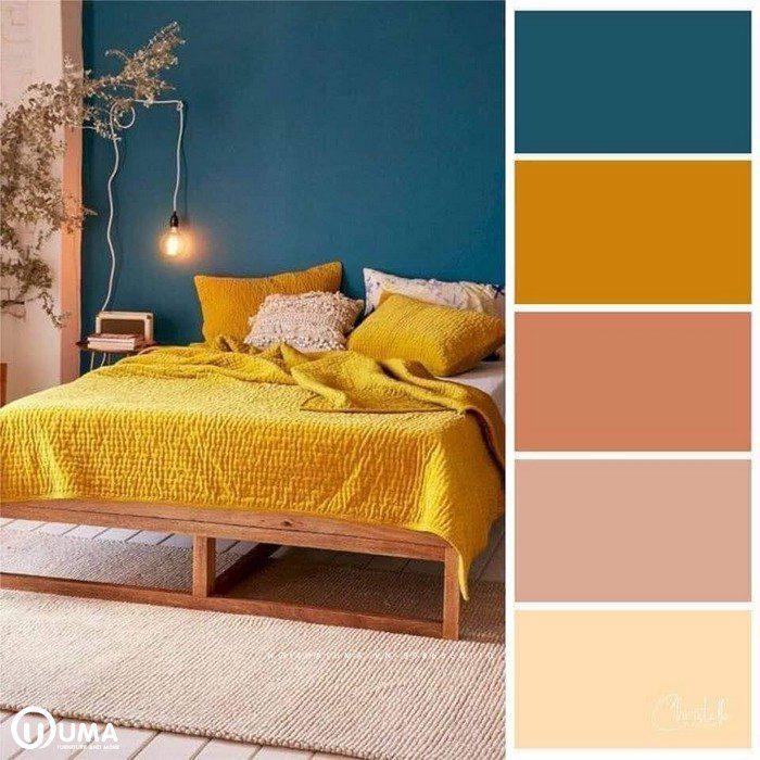 Màu vàng chói kết hợp màu xanh, sử dụng tone màu hiện đại.