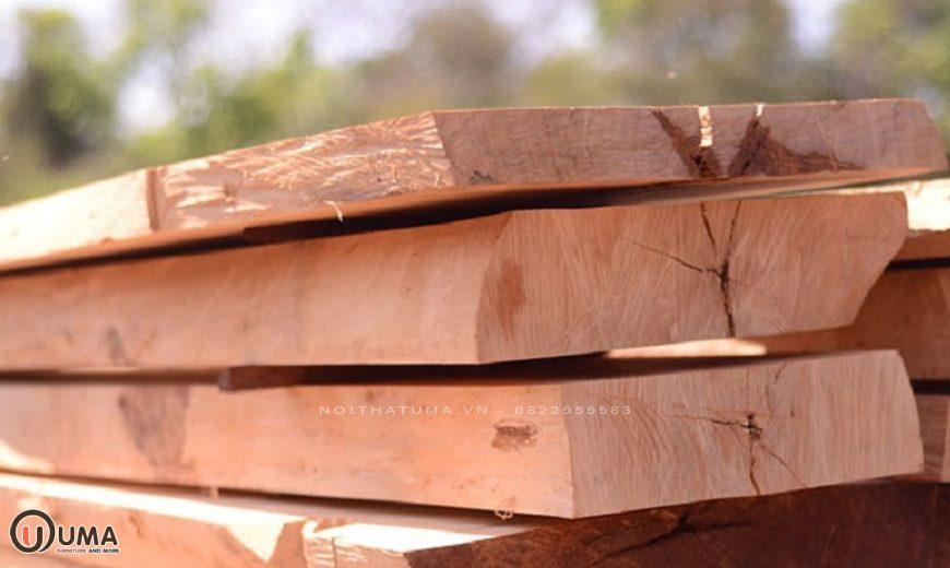 Gỗ nu là gì? Ứng dụng của gỗ nu trong cuộc sống, , , Chất liệu, Tin Tức